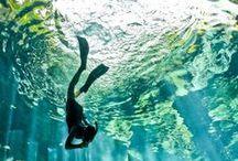 Sea Song ≋ / by Totus Mundi