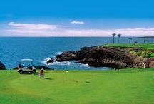 Tenerife Golf Courses / Tenerife is a golfer's paradise, with a perfect temperature during all the year, and 9 beautiful golf courses to enjoy.