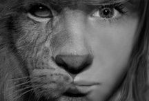 Wild / A YA novel about people who can turn themselves into animals, a lost girl and a crown.