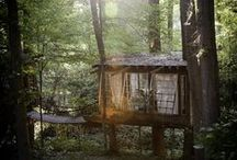 Treehouse / I want to live outside in a treehouse