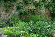Edible landscaping...