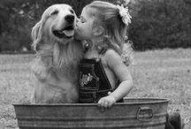[animals] / animals | love | best friends | nature