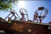 Les Parcs d'attractions de l'Oise / Parc Astérix, Saint Paul, Mer de Sable ... Sensations fortes et émotions pour petits et grands dans les parcs d'attractions de l'Oise  #oise #tourisme #loisir http://www.oisetourisme.com