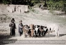 Afghanistan / Photos from around Afghanistan