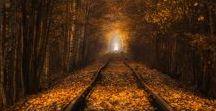 Autumn/Jesień / I love Autumn