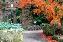 Kráľovské záhrady,parky - Európa
