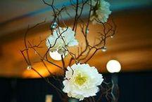 Flower I love