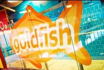 In the News / People are talking about Goldfish...find out why!