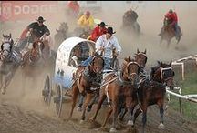 """Cheyenne Frontier Days / Every year during the last full week of July, Cheyenne, Wyoming, brings together rodeo fans, country music lovers, western enthusiasts and fun-seekers from every corner of the globe.  It's the world's largest outdoor rodeo, and that's why it's called, """"The Daddy Of 'Em All!"""""""
