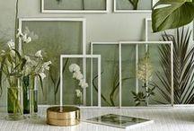 &DIY / Grüne DIY-Ideen für drinnen & draußen