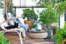 &BALKONIDEEN / Weil ein gemütlicher, grüner Balkon einen fehlenden Garten wett macht.