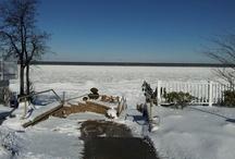 Lake Erie Seasons / by The Lakehouse Inn & Winery
