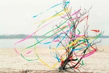 | sense of colour | / by Moni Tschka