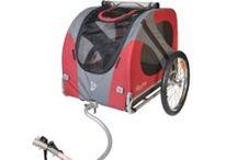 Dog Equipment /