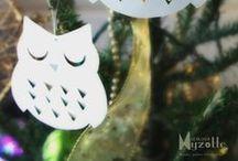 Chouettes & Hiboux - Owls