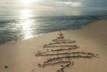 Christmas at the Beach!!!!!!