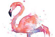 * Flamingos *