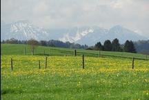 Beautiful Bavaria / Schönes Bayern