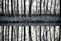 Monochrome / by ChristenDemetriou
