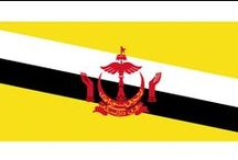 ✧ Brunei ✧ / Brunei, officially the Nation of Brunei, the Abode of Peace (Malay: Negara Brunei Darussalam, Jawi: نڬارا بروني دارالسلام‎), is a sovereign state located on the north coast of the island of Borneo in Southeast Asia. Capital: Bandar Seri Begawan