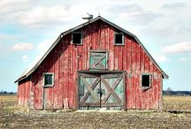 Barns / by Shannon McConnachie