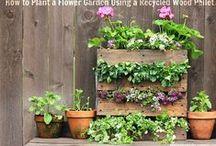 Repurposed Garden / Outdoor Ideas