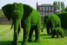 Garden Living Sculptures / A tribute to the exceptional artists who produced these exceptional artworks.