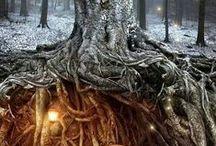 Fairy tales and myths / Sacred places, fairy tales, myths