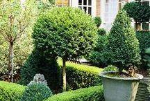 Verde que te quero verde / Paisagismo, jardins, hortas