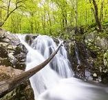 Wonderful Waterfalls / Each section of Shenandoah National Park boasts cascading waterfalls that are accessible via hikes along blue-blazed, forested trails from a parking place along Skyline Drive! Complete your Shenandoah experience with a stay in the park at Skyland, Big Meadows Lodge, or Lewis Mountain Cabins!