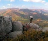 Fall For Shenandoah / Autumn in Shenandoah National Park welcomes an explosion of fall foliage along Skyline Drive and in the Valley views below. Complete your Shenandoah experience with a stay in the park at Skyland, Big Meadows Lodge, or Lewis Mountain Cabins!
