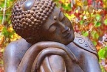 "Sacred: Compassion, Loving-Kindness & Deep Awareness / ""We have two alternatives: either we question our beliefs - or we don't. Either we accept our fixed versions of reality- or we begin to challenge them. In Buddha's opinion, to train in staying open and curious - to train in dissolving our assumptions and beliefs - is the best use of our human lives.""  ― Pema Chödrön / by Debbie Highsmith"