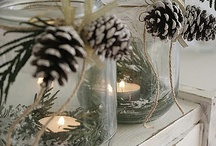 winter decor / by Cat Roth