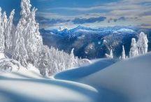 Winter / by Carla Biggs