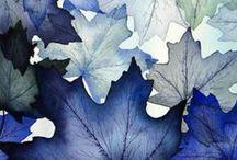 something....blue / by Carla Biggs