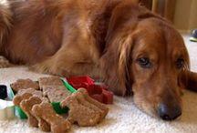 Dog Treats / by Casey Wells