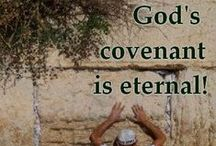 """The City Of God - Israel / The country of the Israelites given to them by God. """"I was glad when they said unto me, Let us go into the house of the LORD. Pray for the peace of Jerusalem: they shall prosper that love thee."""" Psalm 122:1, 6 / by Shirley Zuroff"""