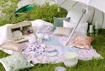 picnics & picnic~tables