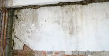 Fungus mold wall Damage / Remove mold mildew from walls