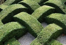 """garden design / """" To plant trees is to give body and life to one's dreams of a better world """" Russell Page"""