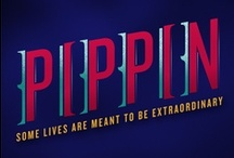 PIPPIN Merch / Remember us with our extraordinary PIPPIN merchandise!