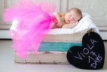 New Born + Maternity Photography / A selection of our shoots to babies