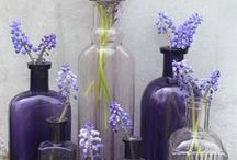 Apothecary ~ Bottles Jars Phials / by Symone Fisher