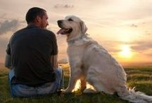 Dog Tips and Tidbits / Training tips, caring tidbits, and interesting facts about dogs...