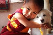 World Dog / The intimate connection between humans and their furry friends crosses all geographic boundaries and cultures.  A dog's love is unconditional in any language.