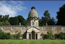 Pineapple Architecture / Pineapples we love from around the world.