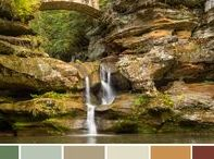 Color Palettes Inspired By Nature / Nature inspired color palette ideas for you home decorating -  Bring the wonder of nature indoors