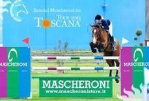 Mascheroni Selleria Giussano / Via Piola 15, 20833 GIUSSANO MB http://selleria.mascheronistore.it +390362850178