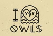 Owls  / My online owl collection and obsession