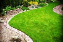 Small Private Garden / Garden